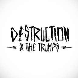Anzi Destruction