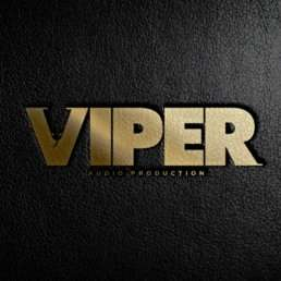 Viper Audio Production